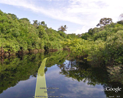 Visit the Amazon with Street View