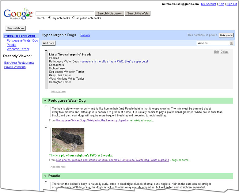 example of Google Notes
