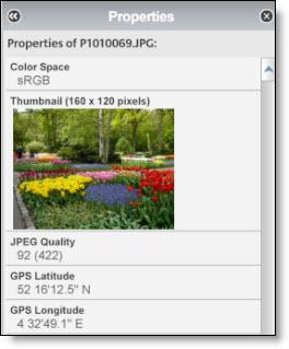 Image metadata being displayed in Picasa