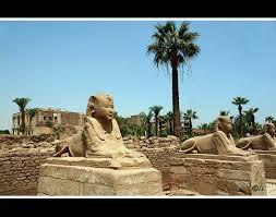 http://www.google.com/images?q=tbn:CB8jlbJl07pLVM::i1.trekearth.com/photos/3737/les_sphinx_de_louxor.jpg