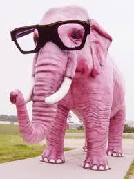 http://www.google.com/images?q=tbn:V9hdSOzV-Zoe3M::www.casafree.com/modules/xcgal/albums/userpics/38023/elephant.jpg&h=94&w=70&usg=__76JwG6Wh-SdfjiS2zzmsFGUTUpw=