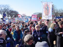 http://www.transporter.com/apologia/life/March4Life02/
