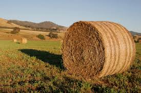 http://commons.wikimedia.org/wiki/File:Round_hay_bale_at_dawn02.jpg