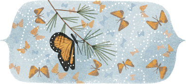 41st Anniversary of the Discovery of the Mountain of the Butterflies