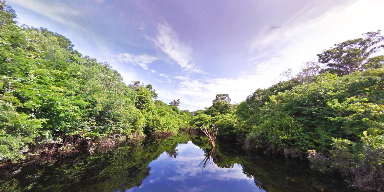 e4151ce31d3cc2 Street View Treks: Amazon – About – Google Maps