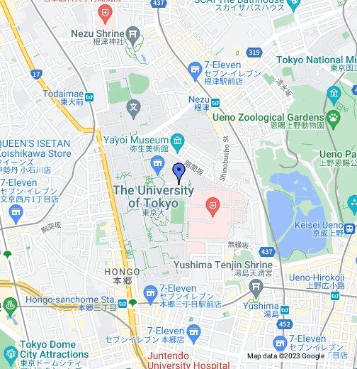 Igarashi Lab - Google My Maps