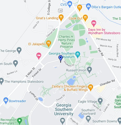 Map Of Georgia Southern.Cogs Google My Maps