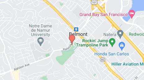 Tree Removal in Belmont, CA