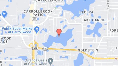 Carpet Cleaning Pros Egypt Lake-Leto in St. Petersburg, FL