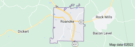 Roanoke Alabama On Site Computer PC & Printer Repairs, Networks, Telecom & Data Cabling Services