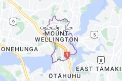 Location of جبل ولنجتون