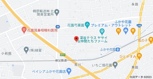 〒369-1245 埼玉県深谷市荒川1697の地図