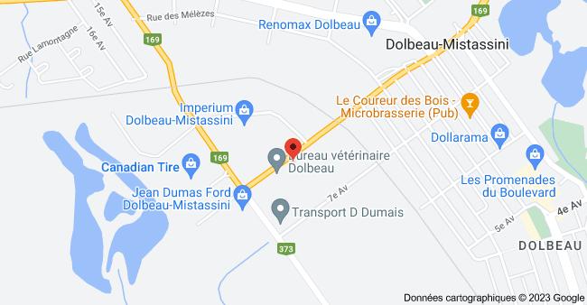 Carte de 356 8e Av, Dolbeau-Mistassini, QC G8L 2R1