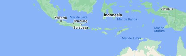 TERREMOTO DE 6.9 GRADOS DEJA 98 MUERTOS EN INDONESIA