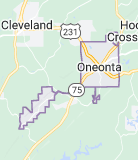 Oneonta Alabama Onsite Computer PC & Printer Repairs, Networks, Voice & Data Low Voltage Cabling Solutions