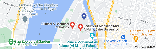 Map of kasr al ainy location