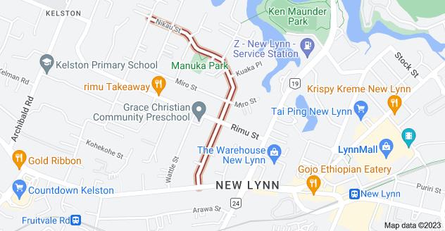 Location of Nikau Street