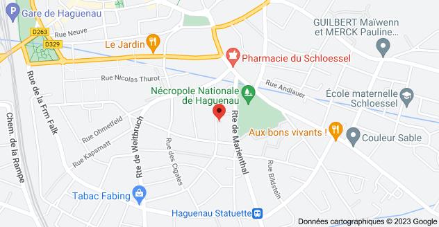 9 Rue Anshelm, 67500 Haguenau: carte