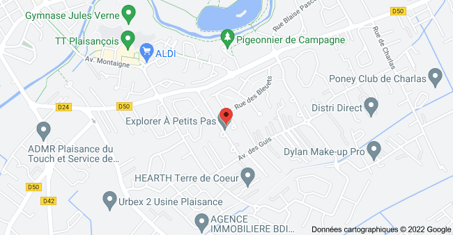 13 Rue Jules Verne, 31830 Plaisance-du-Touch: carte