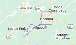 Oneonta Alabama Superior Voice & Data Network Cabling Contractor